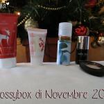 Box: #43 Glossybox di Novembre 2013